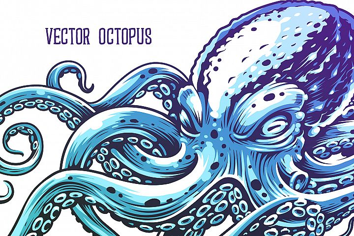 Octopus Vector Art