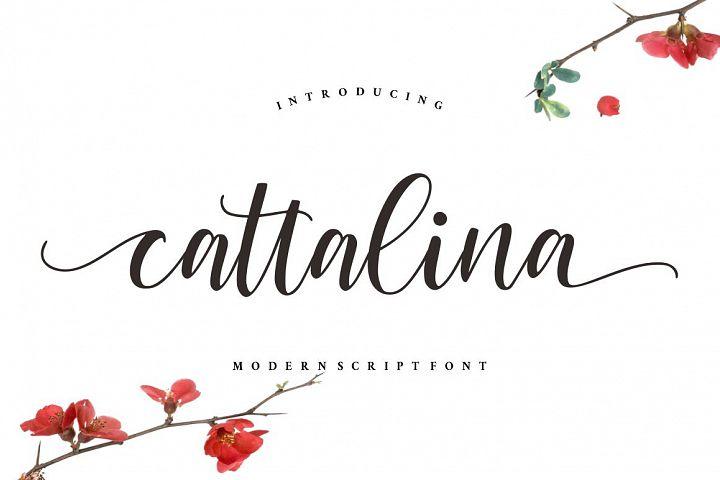 Cattalina - Beauty Script Font