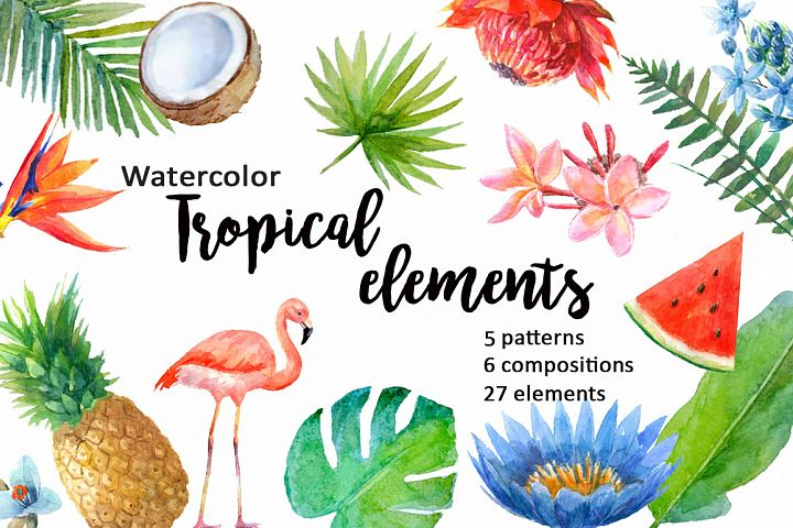 Watercolor tropical elements.