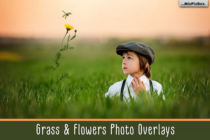 Grass and Flowers Photo Overlays