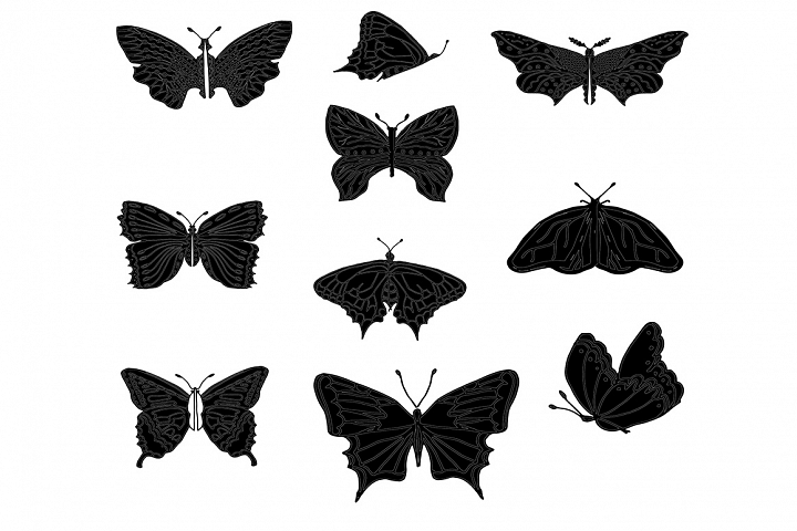 Set of butterflies, isolated on white, collection of silhoue