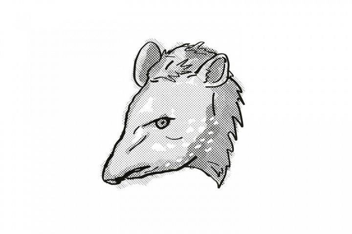 Tapir Endangered Wildlife Cartoon Retro Drawing
