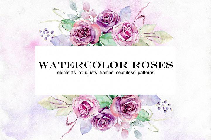 Watercolor roses. Set.
