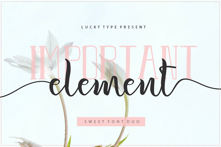 Important Element Font Duo
