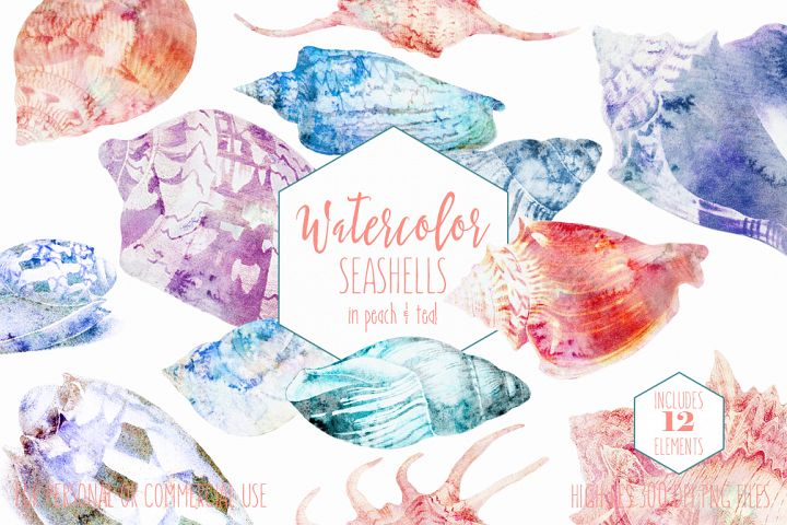 Beach Seashells Ocean Shells Clipart