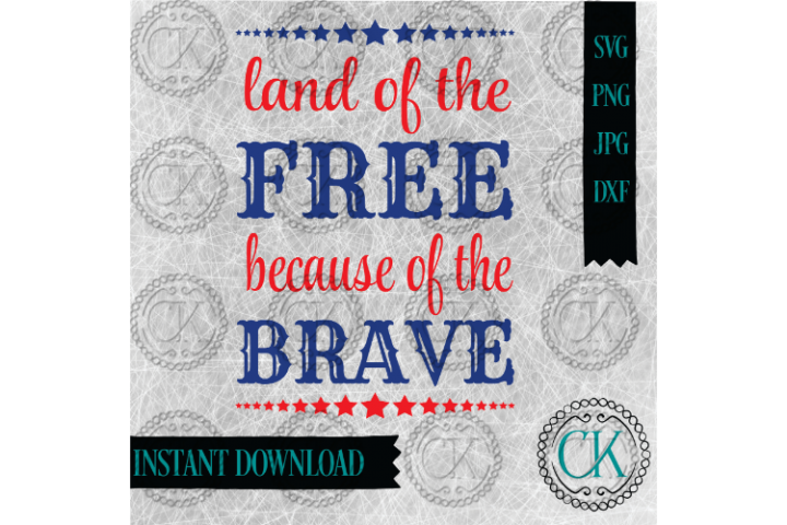 Land of the Free Because of the Brave, July 4th SVG, Veteran