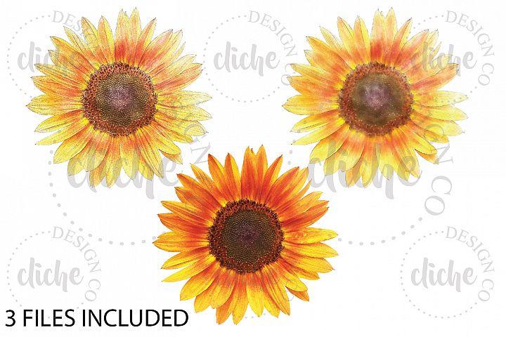 Rustic Sunflower Sublimation Design