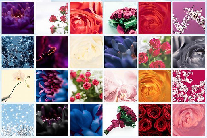 50 Images | Floral Stock Photo Bundle #1