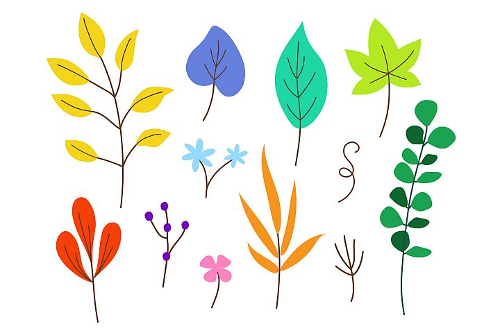 Vector illustration collection of colourful leaves