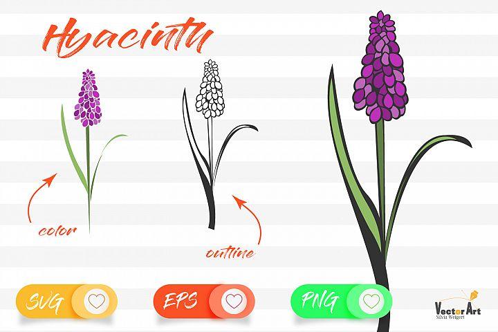 Hyacinth - Cut File with 2 Layers