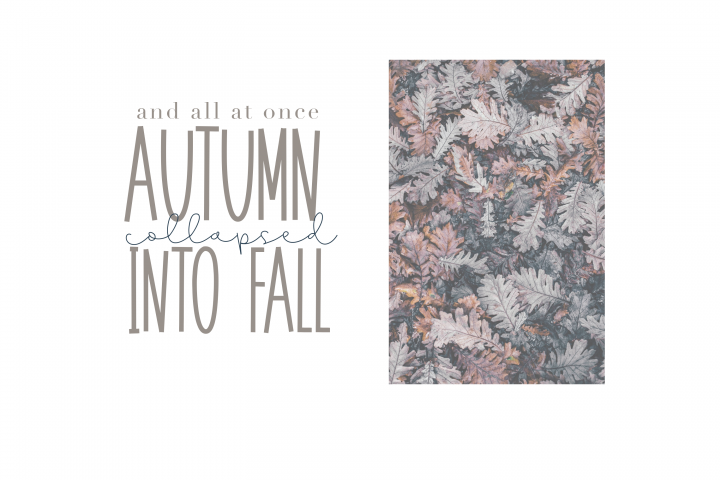 November - A Tall Handwritten Font - Free Font of The Week Design5