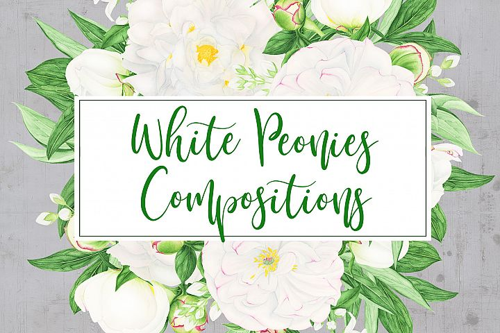Watercolor Peonies Compositions