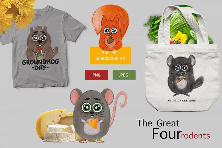 Forest rodents squirrel, mouse, groundhog and chinchilla