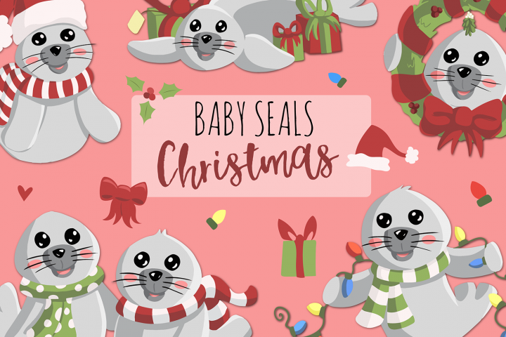 Baby Seals Traditional Christmas