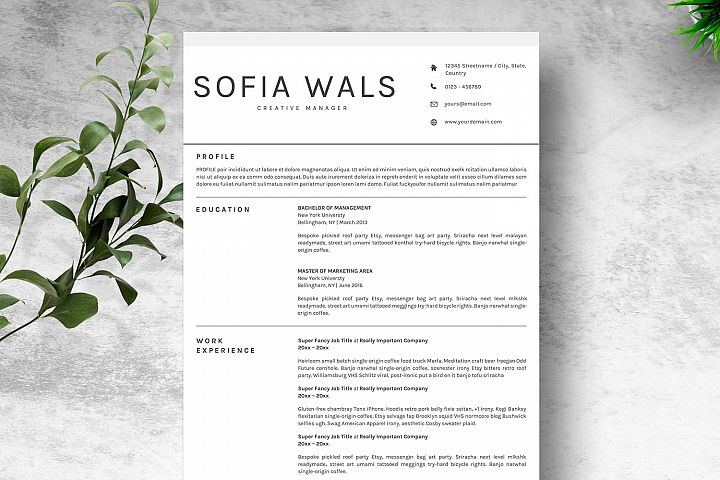 Clean Resume Template CV MS. Word & Google Docs MAC Pages