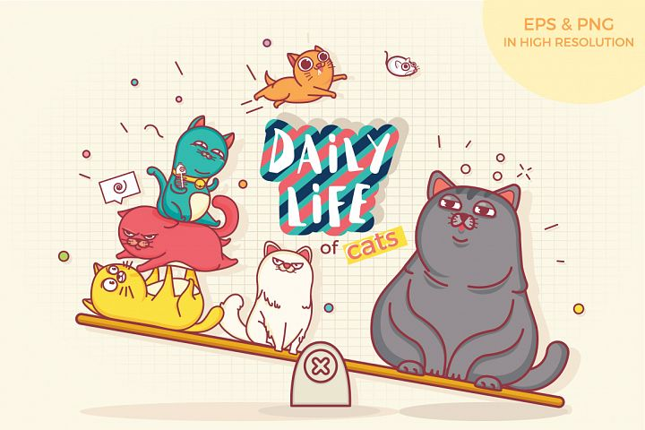 Daily Life Of Cats