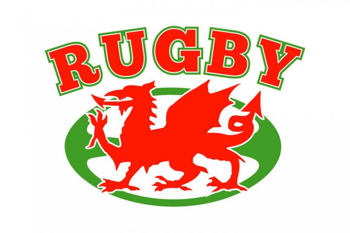 rugby ball wales red welsh dragon