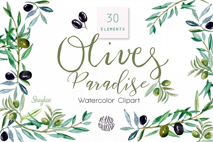Olives Foliage Watercolor Clipart, Green Olive, Black Olive