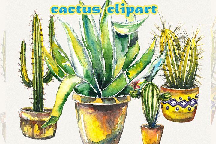 Cactus clipart, floral clipart, cactus wall art, clip art