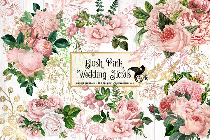 Blush Pink Wedding Floral Clipart - Free Design of The Week Font
