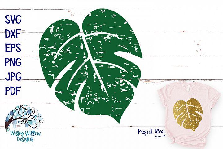 Distressed Monstera Leaf SVG | Grunge | Summer SVG Cut File