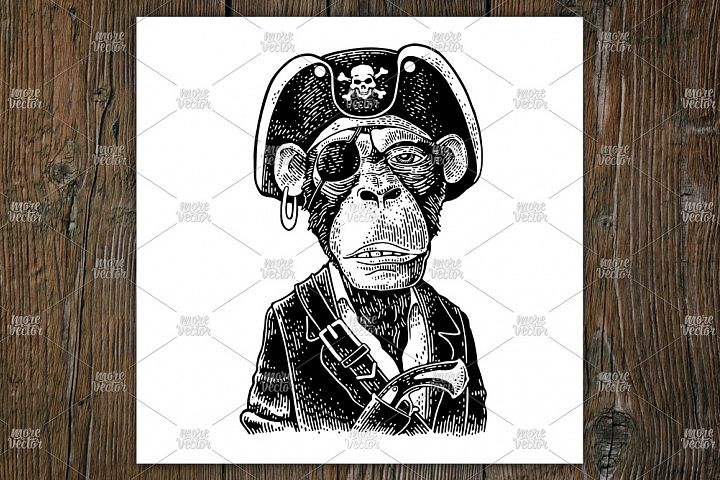 Monkey pirate with gun, cocked hat, suit. Vintage engraving