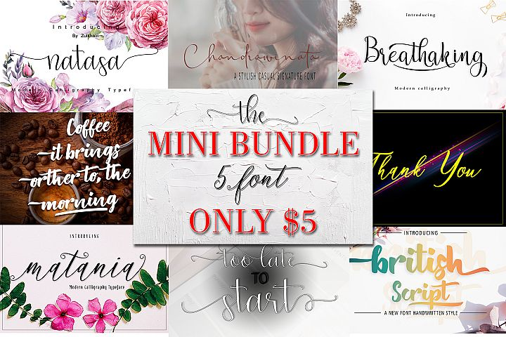 The Mini Bundle $1 /font