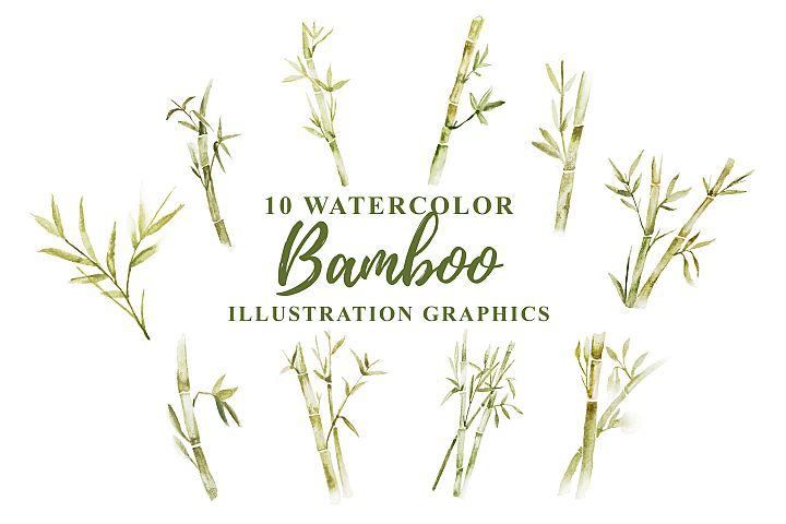 10 Watercolor Bamboo Illustration Graphics