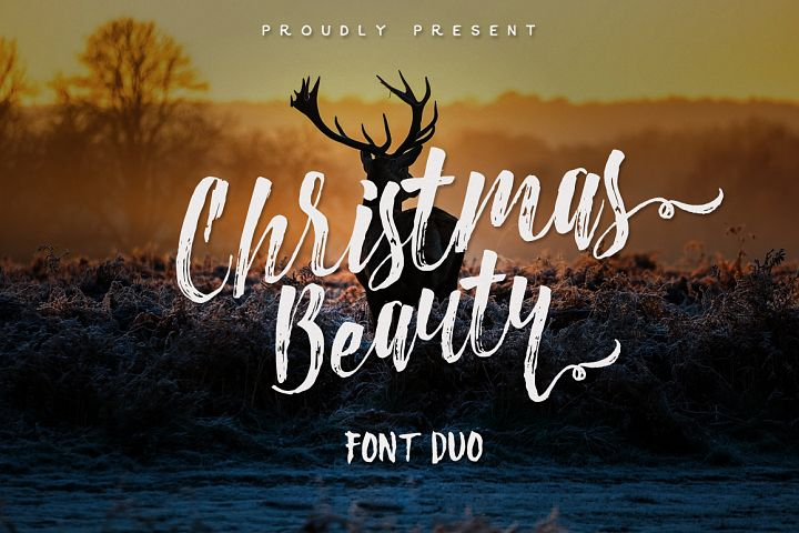 Christmas Beauty Font Duo