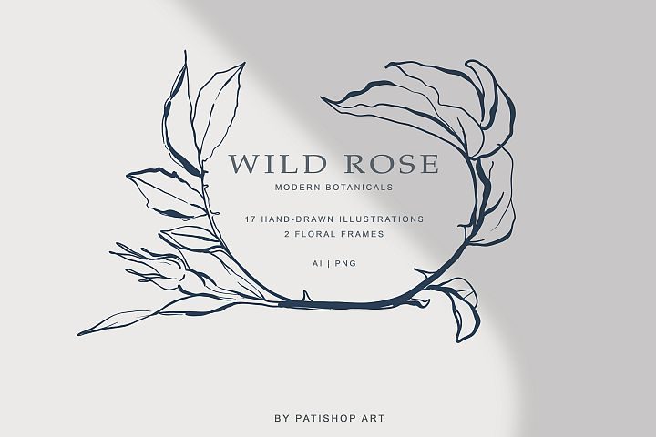 Modern Minimalism Hand Drawn Rose Fine Art