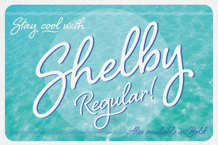 Shelby Regular