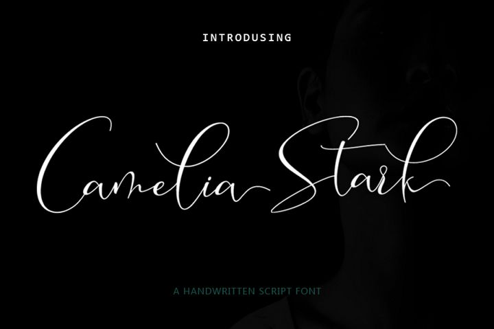 Camelia Stark Script