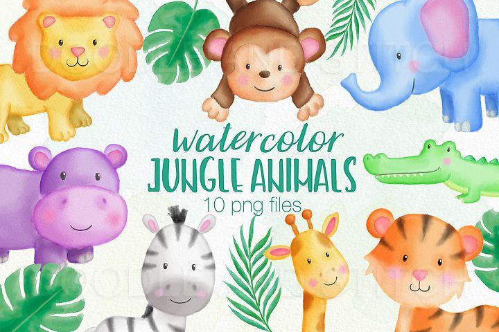 Jungle Animal Watercolor Illustrations