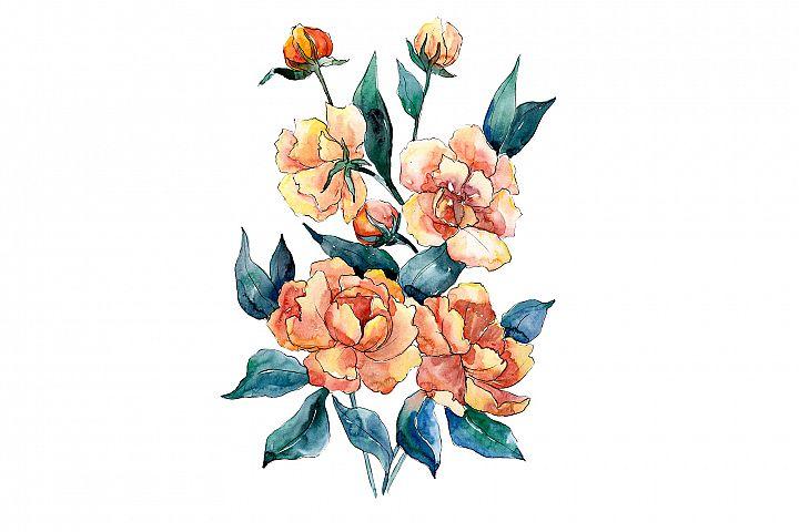 Bouquet of flowers Dimeter orange watercolor png