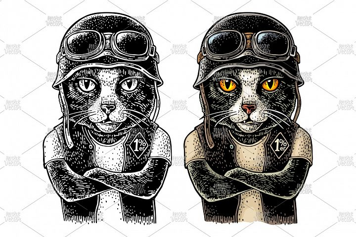 Cat biker Vector color vintage engraving