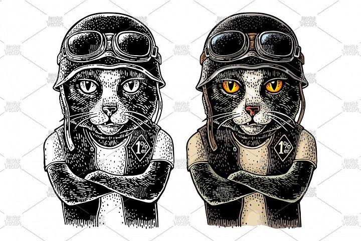 Cat biker Vector color vintage engraving