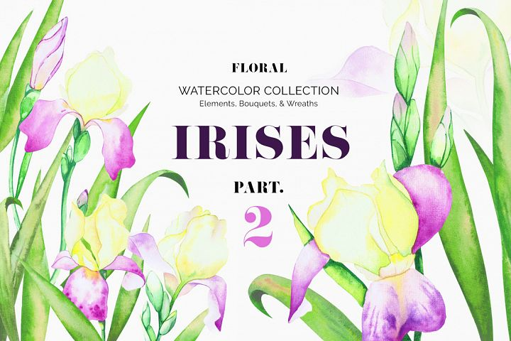 Irises. Watercolor Floral Set. Part2