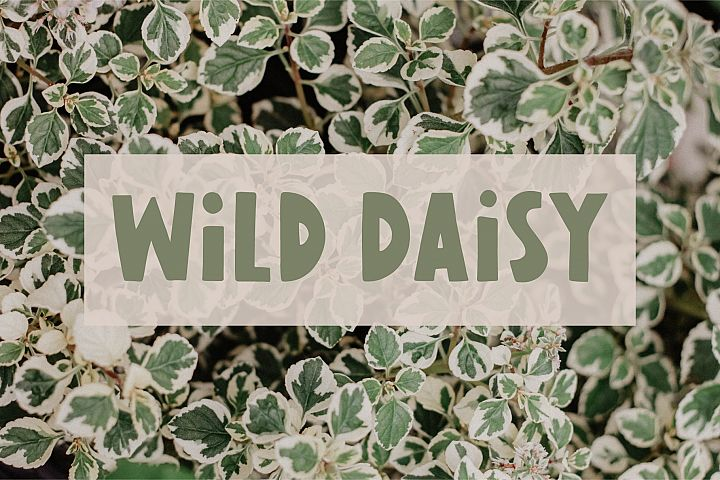 Wild Daisy | Hand-Lettered Font