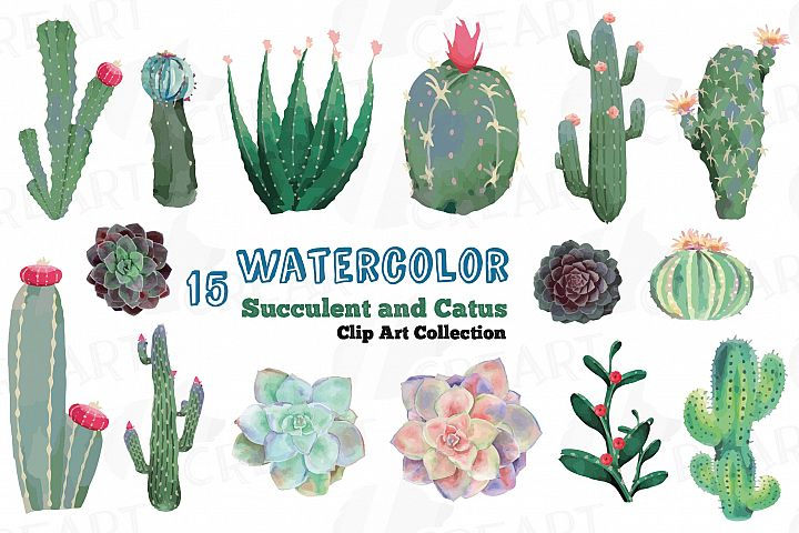 Watercolor cactus and watercolor succulent Clipart pack