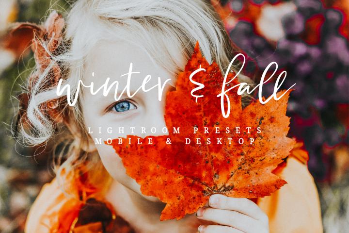 Winter & Fall- Lightroom Presets