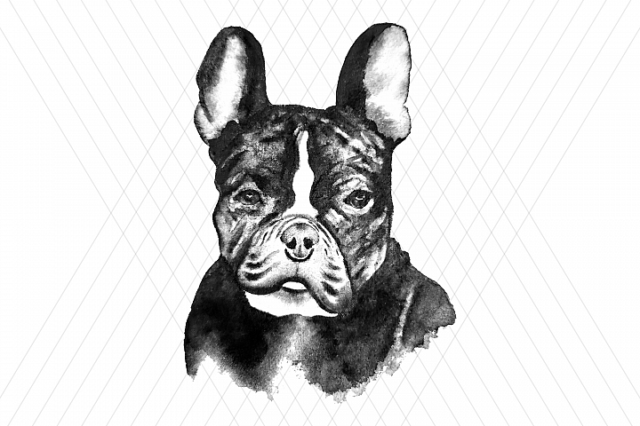 Watercolor DOG clip art
