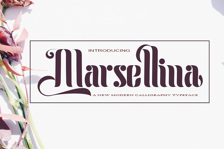 Marsellina