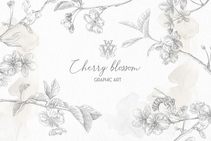 Floral fine art, botanical wedding black outline clipart