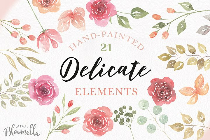 Rose Watercolor Floral Peach Clipart Elements Flowers Floral