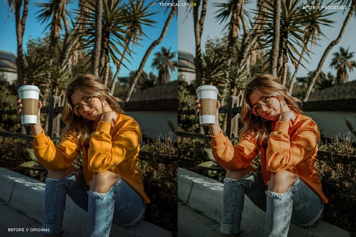 12 Tropical Life Presets for Lightroom example 9