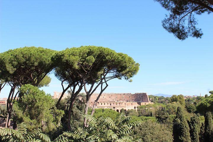 Colosseum Distance