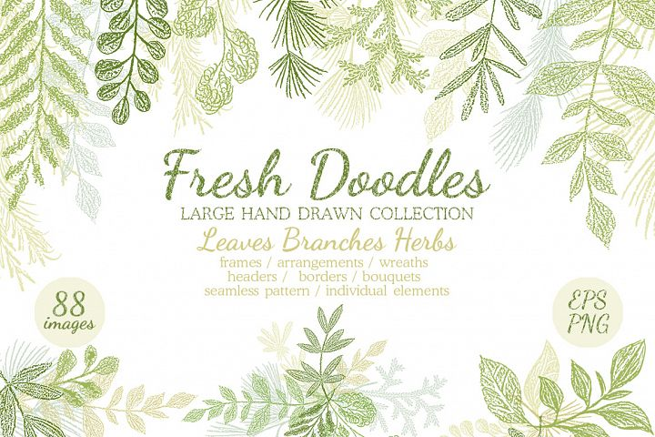 Hand drawn Leaves Branches & Herbs Fresh Doodle collection