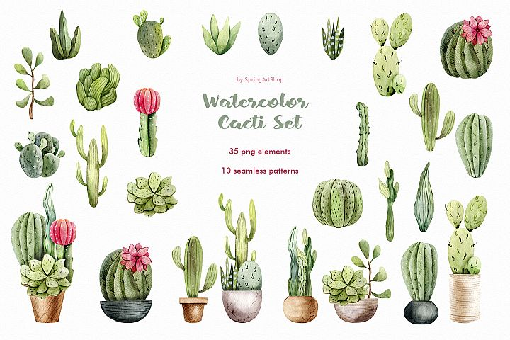 Watercolor Cacti clipart Plants watercolor succulents