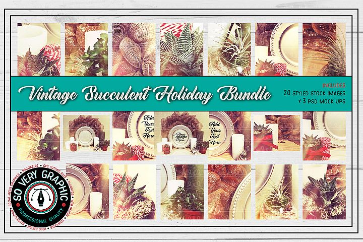 20 Vintage Succulents Holiday Styled Stock | Mock Up Bundle