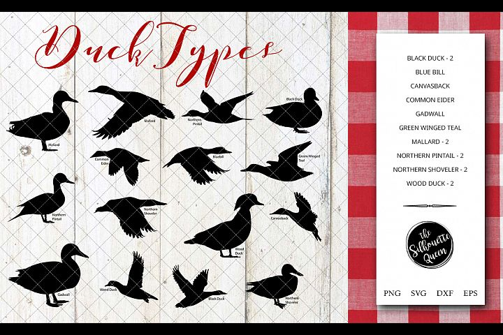 Duck Breeds Silhouette Vector svg file, duck svg cut file